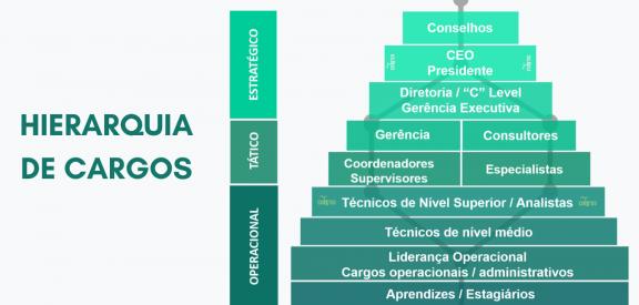 Classificação de Cargos na Hierarquia Organizacional